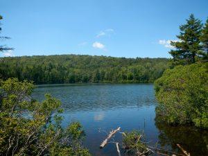 appalachian trail bennington
